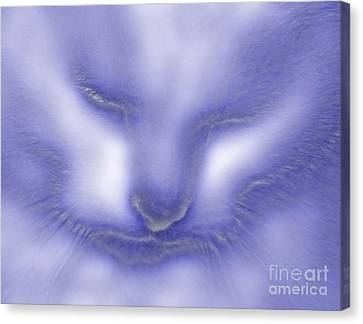 Digital Puss In Blue Canvas Print by Linsey Williams