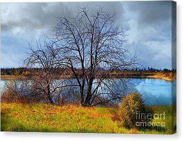 Quarry Lakes In Fremont California . 7d12636 Canvas Print by Wingsdomain Art and Photography