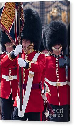 Queens Guards Canvas Print