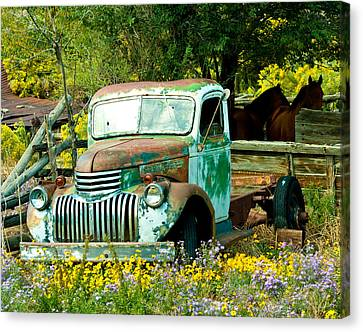 Canvas Print featuring the photograph Questa Truck by Jim  Arnold