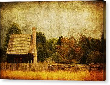 Quiet Life Canvas Print by Andrew Paranavitana