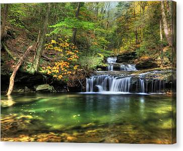 Quinn Run Cascades Canvas Print by Lori Deiter
