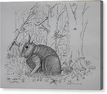 Canvas Print featuring the drawing Rabbit In Woodland by Daniel Reed