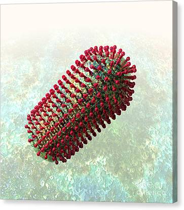 Rabies Virus 2 Canvas Print