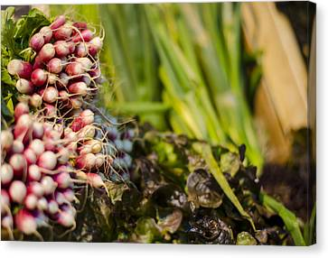 London Canvas Print - Radishes At The Market by Heather Applegate