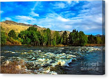 Raging River Canvas Print by Robert Bales