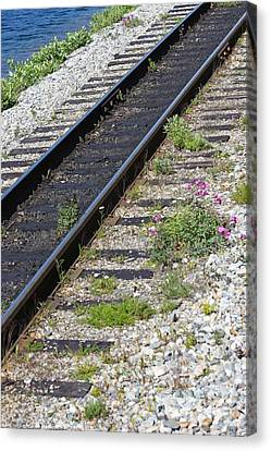 Skagway Canvas Print - Railroad To Yukon by Sophie Vigneault