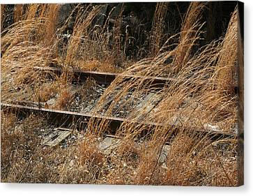 Rails Retired Canvas Print by Theresa Johnson