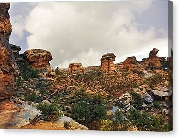 Rain At The Needles District Canvas Print by Marty Koch