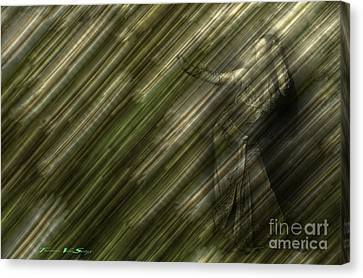 Rain Dances On The Rattan Cane Canvas Print by The Stone Age