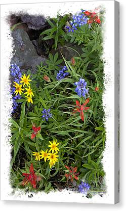 Rain Forest Bouquet Canvas Print