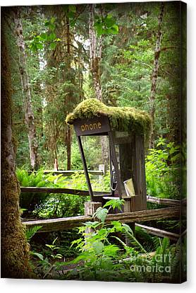 Canvas Print featuring the photograph Rain Forest Telephone Booth by Tanya  Searcy