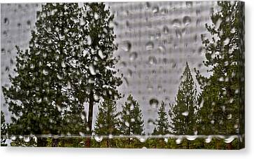 Rain On My Windowpane Canvas Print by Kirsten Giving