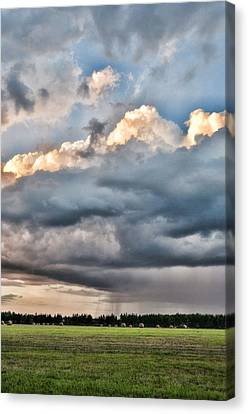 Rain On The Hay Harvest Canvas Print by Jan Amiss Photography