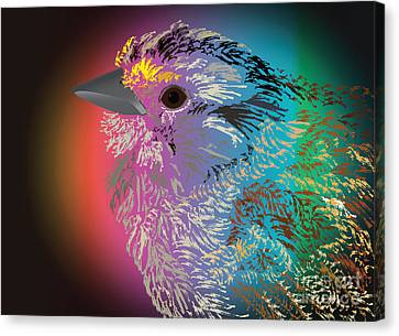 Rainbow Bird Canvas Print by Michelle Bergersen
