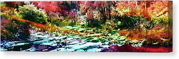 Rainbow Bushfire Canvas Print