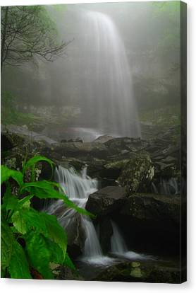 Canvas Print featuring the photograph Rainbow Falls In Fog by Doug McPherson