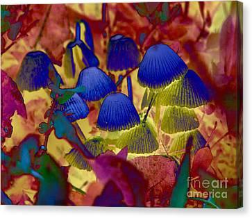 Rainbow Mushrooms Canvas Print by Erica Hanel