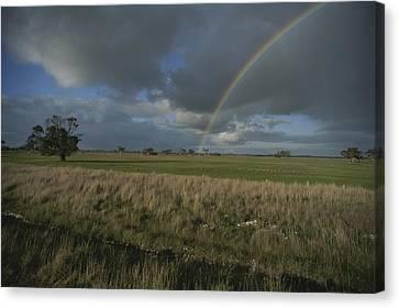 Rainbow Over Fields At Kangaroo Island Canvas Print by Sam Abell
