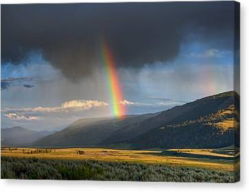 Rainbow Over Lamar Valley Canvas Print by Yvonne Baur