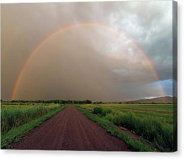 Rainbow Canvas Print by Pat Gaines