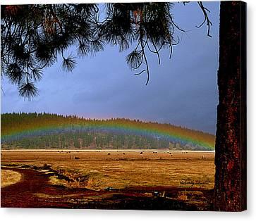 Rainbow Ridge Canvas Print by Cindy Wright