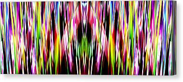 Rainbows Canvas Print by Danny Lally