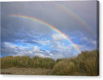 Rainbows Over The Sand Canvas Print by Tyra  OBryant