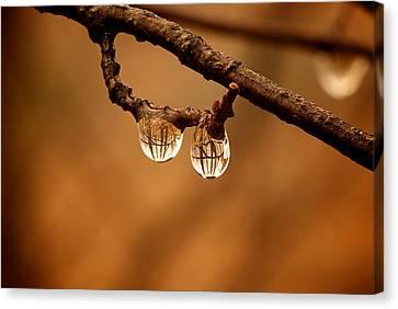 Raindrop Reflection Canvas Print