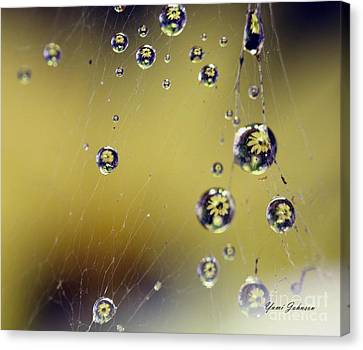 Canvas Print featuring the photograph Raindrops On The Spider Web by Yumi Johnson