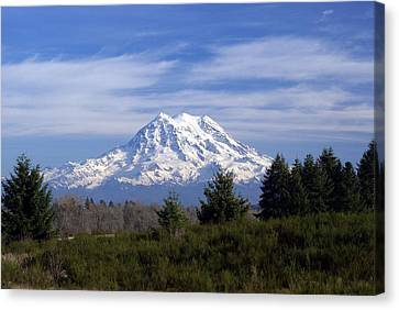 Rainier In High Contrast Canvas Print by Rob Green