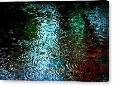 Rainy Day River Solitude Canvas Print by Bruce Carpenter