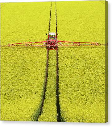 Rape Seed Spraying Canvas Print by JT images