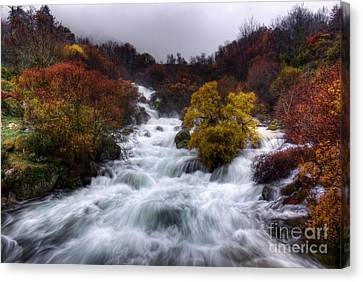 Rapid Waters Canvas Print