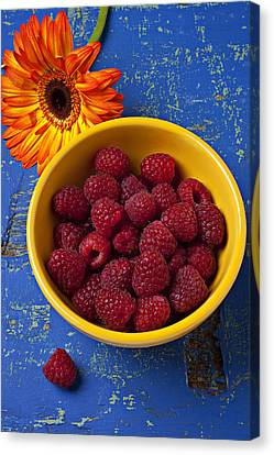 Raspberries In Yellow Bowl Canvas Print by Garry Gay