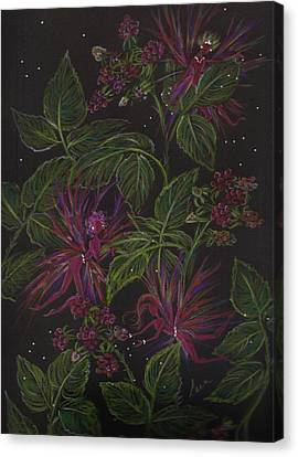 Raspberry Hunting Canvas Print by Dawn Fairies