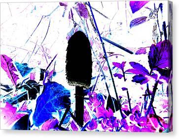 Raw Pleasures Canvas Print by Cyryn Fyrcyd