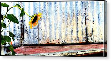 Ray Of Hope Canvas Print