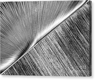 Rays And Lines. Black And White Canvas Print by Ausra Huntington nee Paulauskaite