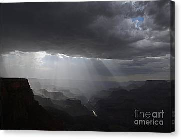 Rays In The Canyon Canvas Print