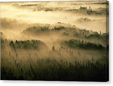 Rays Of Early Morning Sunlight Beam Canvas Print by Raymond Gehman