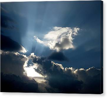 Rays Of Light Canvas Print by Mark Dodd
