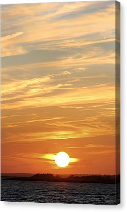 Reach For The Sky 6 Canvas Print by Mike McGlothlen