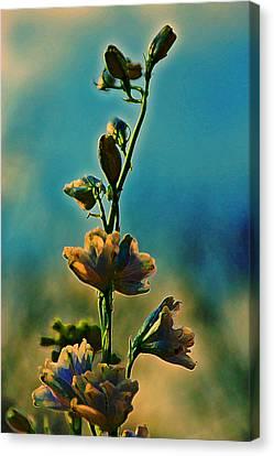 Reaching Blooms Canvas Print by Bill Tiepelman