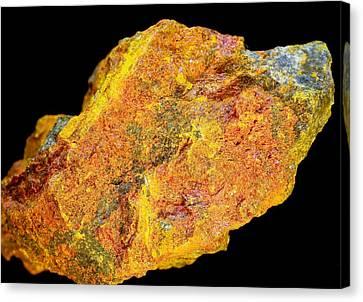 Realgar Mineral Canvas Print by Dirk Wiersma