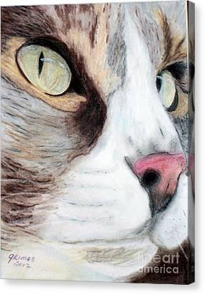Really Intense Canvas Print by Carol Grimes