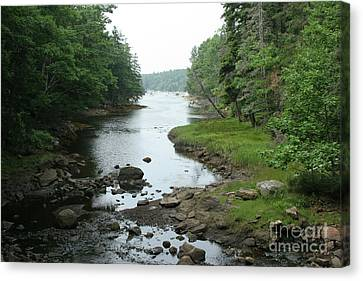 Receding Tide In Maine Part Of A Series Canvas Print by Ted Kinsman