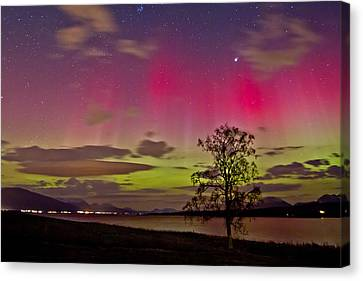 Red And Green Canvas Print by Frank Olsen