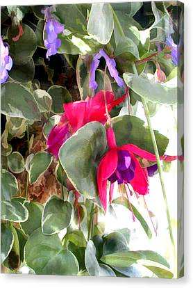 Red And Purple Fuschia Blooms Canvas Print by Elaine Plesser