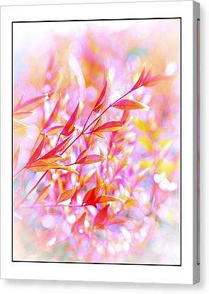 Red And Yellow Leaves Canvas Print by Judi Bagwell